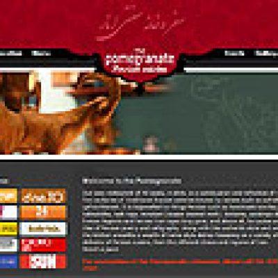 طراحی وب سایت رستوران بین المللی انار