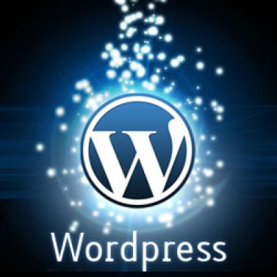 hamyaran-net-wordpress (1)